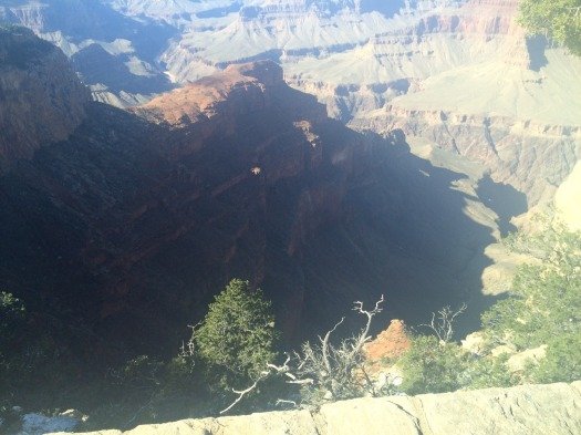 1.1446758975.grand-canyon-az-13