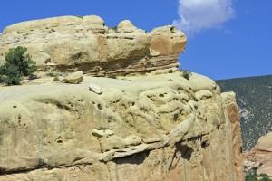 turtle-rock